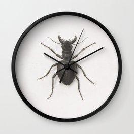 Pierre Joseph Redouté - A Stag Beetle Wall Clock