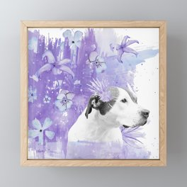 Sugarplum Pitbull Framed Mini Art Print