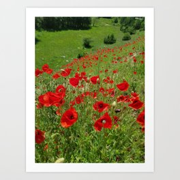 Poppy flower field, poppies mountain view, oil paint effect Art Print