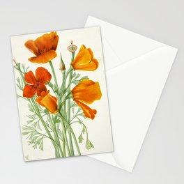 California Poppy Vintage Botanical Print, Mary Vaux Walcott Stationery Cards