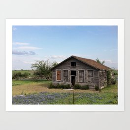 An old house covered by blue bonnets view 2 Art Print