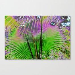 palm leaf design Canvas Print