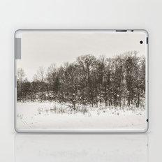 Winter Landscape II Laptop & iPad Skin