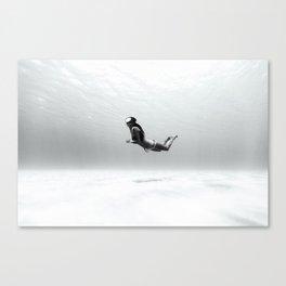 140831-0300 Canvas Print