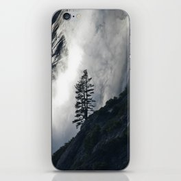 Pine Tree against Water Fall iPhone Skin