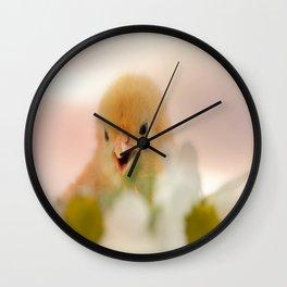 Wonderful animals World Wall Clock