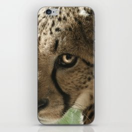 Cheetah iPhone Skin