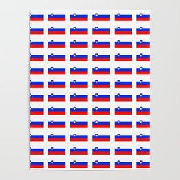flag of slovenia - slovenia, slovenian,Slovene, Slovenija,Ljubljana,yugoslavia. Poster