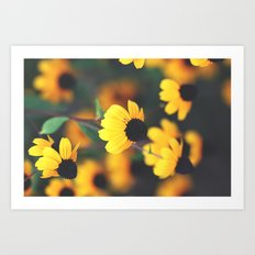 Flowered Romance Art Print