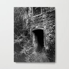Stalker I Metal Print