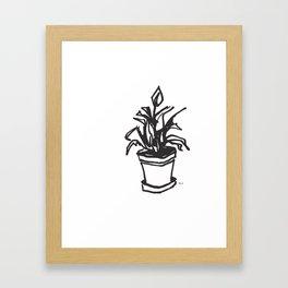 Peace Lily Framed Art Print