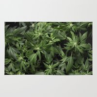 weed Area & Throw Rugs featuring Weed by Vyacheslav Sizov