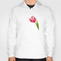 tulip Hoodies featuring Tulip by inkedsandra