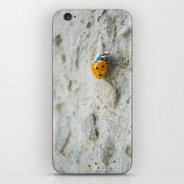 Ladybird iPhone Skin