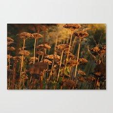 Autumn Tint of Gold Canvas Print