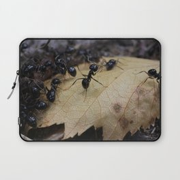 Ants Laptop Sleeve