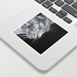 Tom cat Sticker
