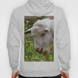 Goat A Load To Talk About Hoody