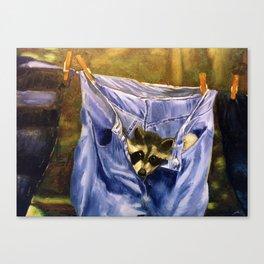 Just Hanging Around Canvas Print
