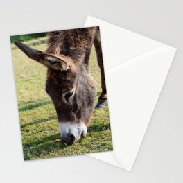 New Forest donkey Stationery Cards