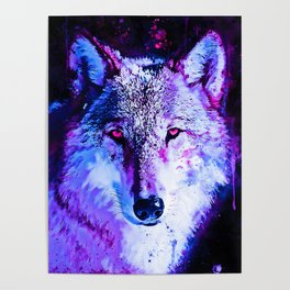 wolf splatter watercolor purple blue Poster
