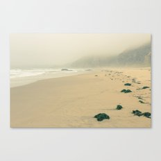 Point Reyes On A Sunday Canvas Print
