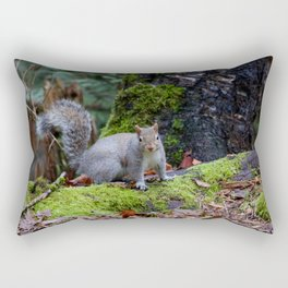 Squirrel2 Rectangular Pillow