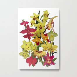 Orchids - Hot Colors! On white Metal Print