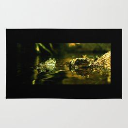 Green Frogs Rug