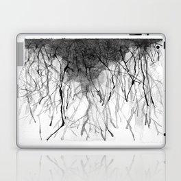 Rivers in the Desert  Laptop & iPad Skin