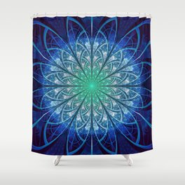 Beautiful Baby Blue and Powdered Fractal Snowflakes Shower Curtain