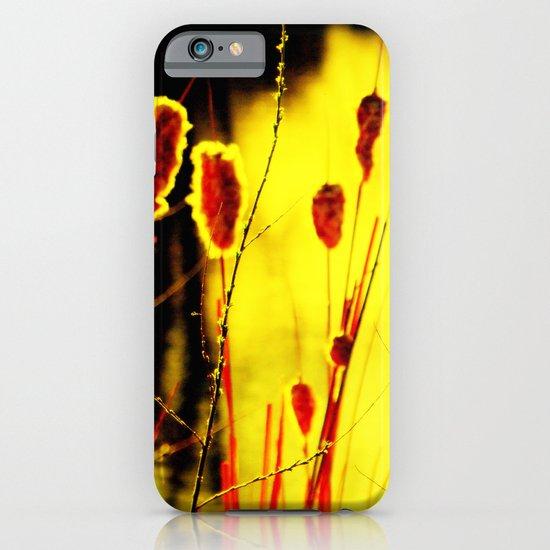 Sunset Light iPhone & iPod Case