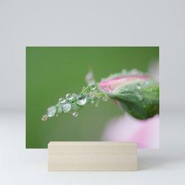 Drops of Life Mini Art Print