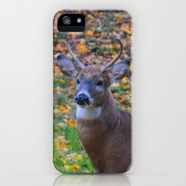 Curiosity of Youth iPhone Case