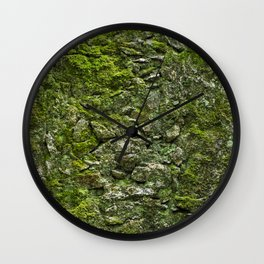 Green wall covered with moss and little plants Wall Clock