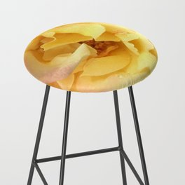 Summer Rose in Pink and Yellow Bar Stool