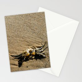 Crab in the Sand Stationery Cards