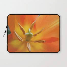 Lily-Flowered Tulip Laptop Sleeve