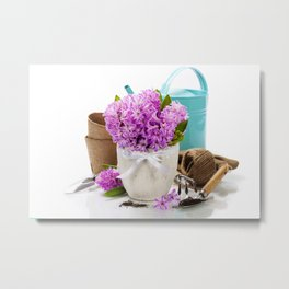 Beautiful Hyacinths in vase and garden tools over white Metal Print
