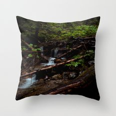 The Brook Throw Pillow