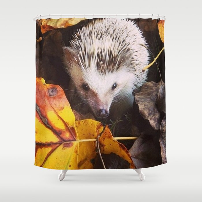 Juni Hedgehog Fall Leaves Shower Curtain
