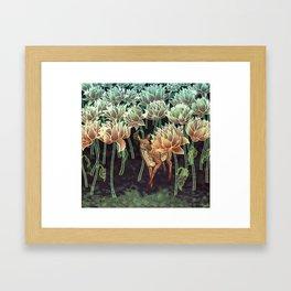 Fallow Forest Framed Art Print