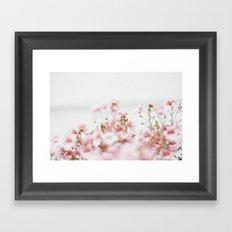 tiny pink flowers  Framed Art Print