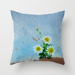 Daisies on rusty metal Throw Pillow