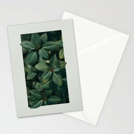 Growth III Stationery Cards