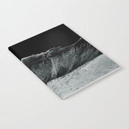 frozen world Notebook