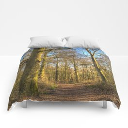 The Forest Path in Springtime Comforters