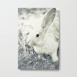 Rabbit Metal Print
