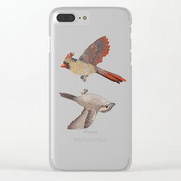cardinal and sparrow Clear iPhone Case