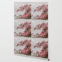 bougainvillea Wallpaper
